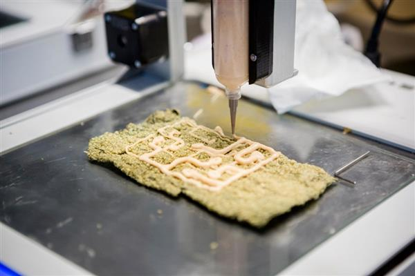 Some Really Important Aspects Of Food Safe 3D Printing