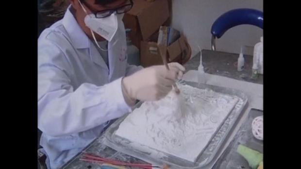 3D Printed Liver model