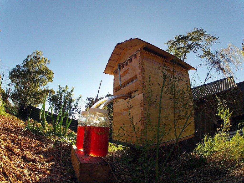 Flow™ Hive