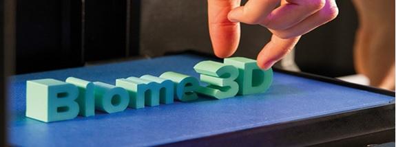 biome 3d plastic