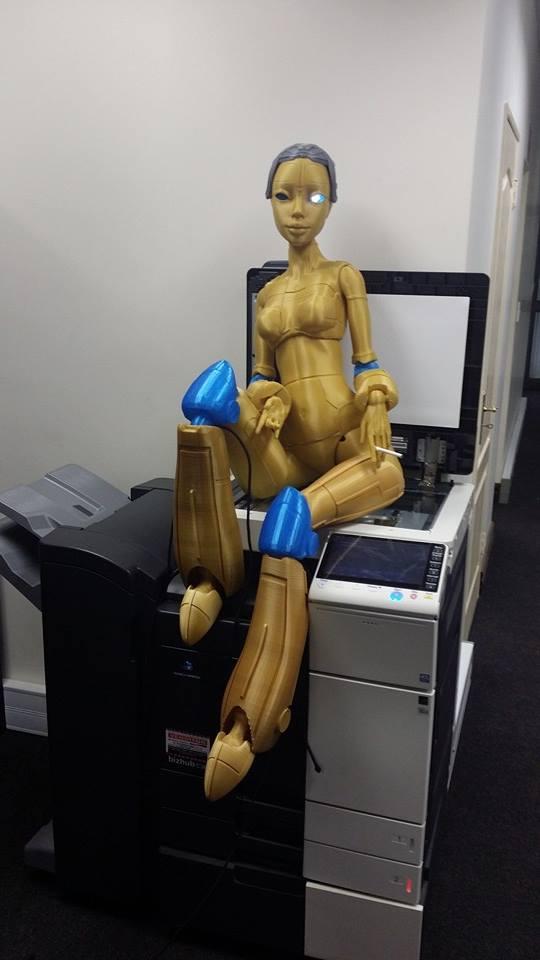 3D printed Robotica doll